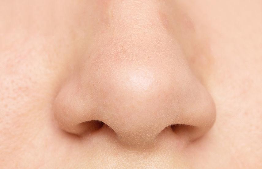 Die 4 besten Tipps gegen eine trockene Nase